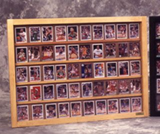 50 Baseball card displays case will hold 50 ungraded baseball cards 100095
