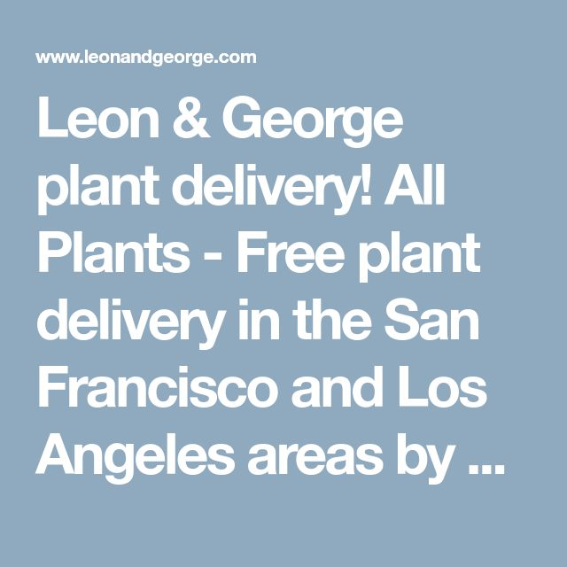 Leon & George plant delivery! All Plants - Free plant delivery in the San Francisco and Los Angeles areas by Léon & George