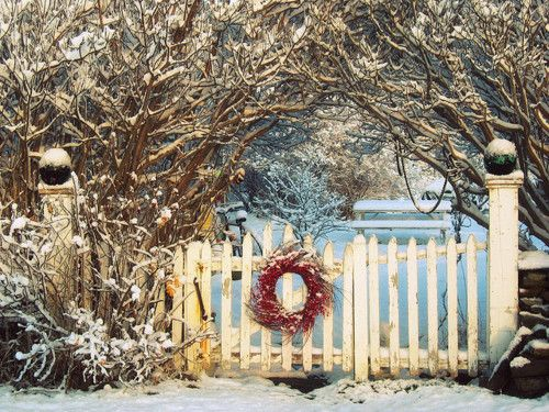 .: Winter Snow, Winter Scene, Winter Wonderland, Gardens Gates, Christmas, Winter Garden, Holidays, Winter Wreaths, White Picket Fence