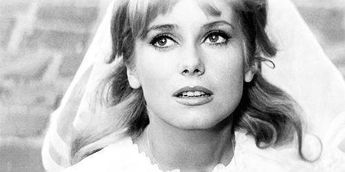 Catherine Deneuve in Le vice et la vertu (1963)