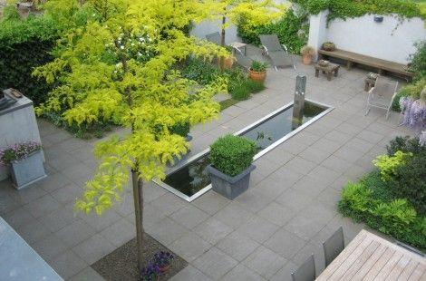 Kleine strakke tuin met weinig onderhoud