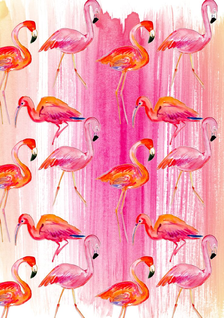 Flamingos A5 Notebook Cover size (perfect for your Well Child Tamariki Ora My Health Book) #Flamingo #flamingos #bookcover
