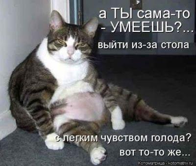 Домик вышивающей кошки: То полезно, что в рот полезло,))) или Немного о стройности и питании