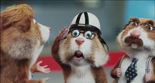 Hamsterweken met Andre van Duin
