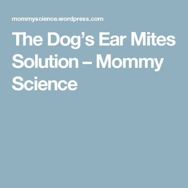 The Dog's Ear Mites Solution – Mommy Science