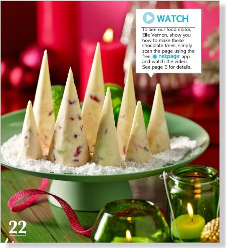 Make Christmas magic: White Christmas trees - clipped from page 42 of Better Homes and Gardens, Dec 2013 issue by the Netpage app.
