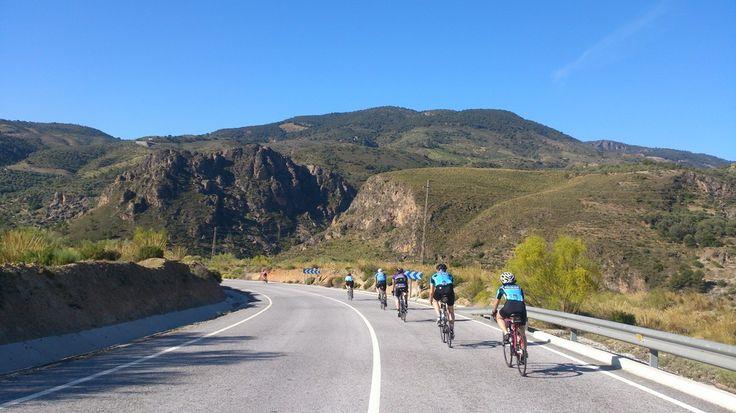 Road Cycling Training Camp 2016 Andalucia Spain Malaga Granada Road Cycling Holiday #cyclingtours #cyclingholidays #bikehire #guidedcycling #andalucía #granada #spain #sierranevada #aplujarras #trainingcamps #scholarship #cycling #bike