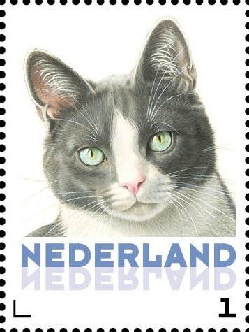 Stamp: Domestic Cat (Felis silvestris catus) (Netherlands - Personalized stamps) (Cats, Francine van Westering) Col:NL 2015-107