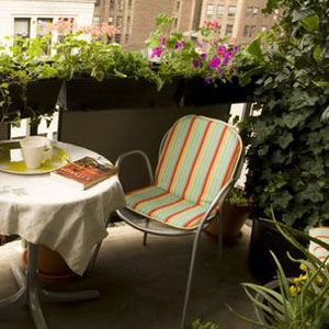 How to Start a Balcony Garden | Pretty ^.^