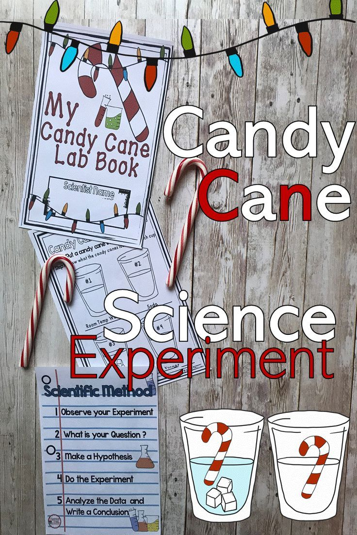 Ever Wonder What Happens When You Put >> Ever Wonder What Happens To Candy Canes If You Put Them In Soda