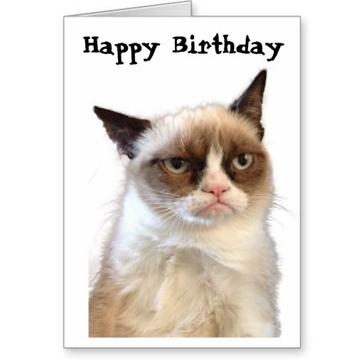 Grumpy Cat Happy Birthday Card Happy Birthday Cards Grumpy Cat