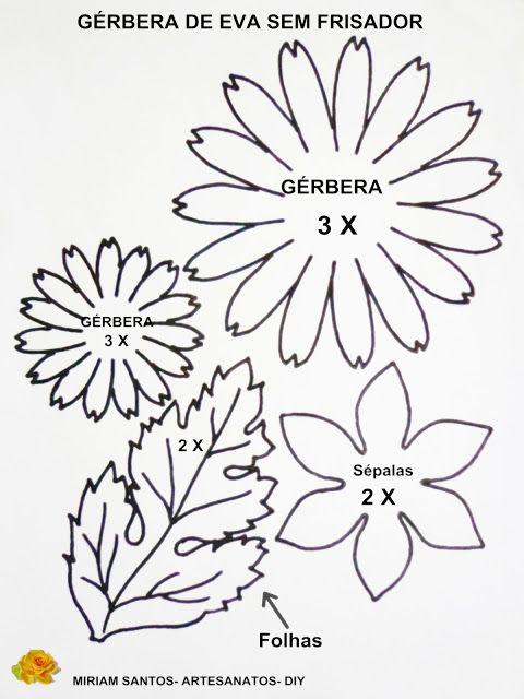 Flores de Mira: Gérbera de Eva sem Frisador