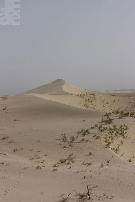 Taklamakan Desert, Xinjiang, China