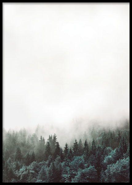 Plakat med sort og hvidt fotografi af skoven. Stilfuld sort-hvide plakater