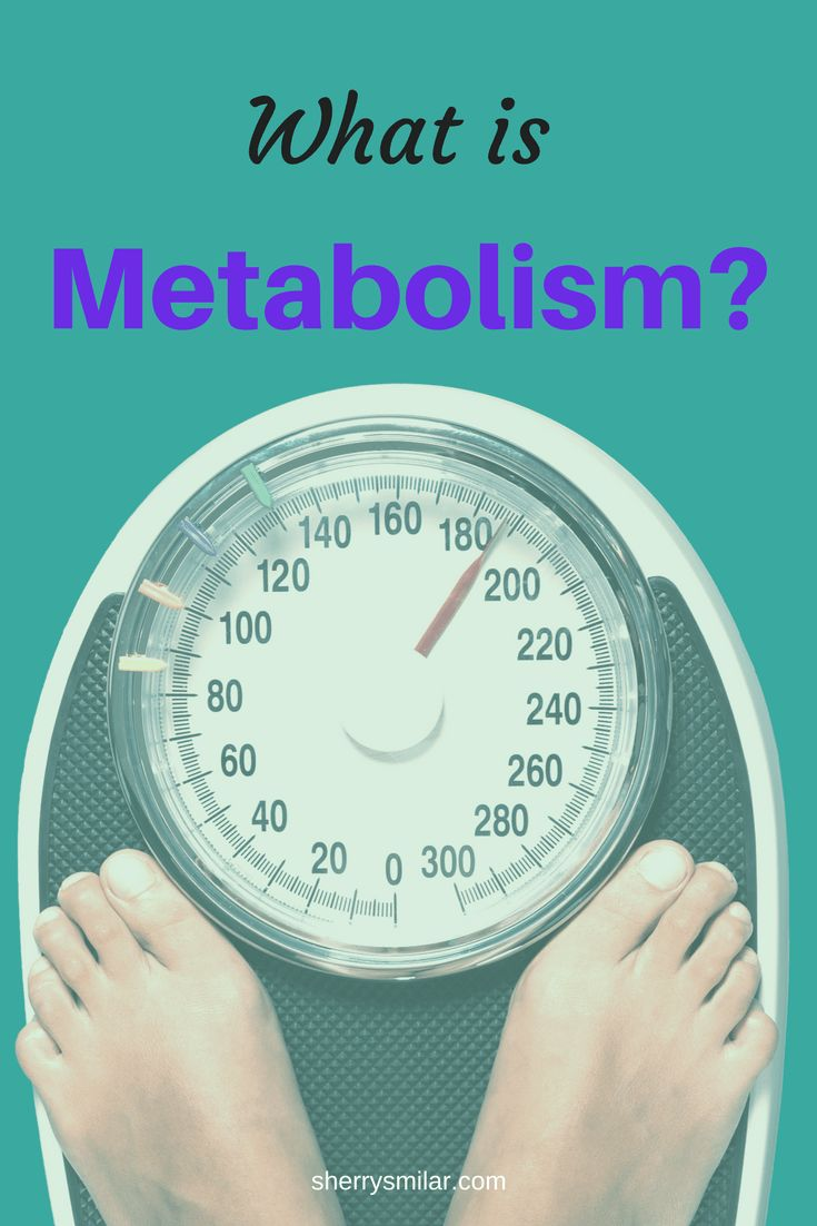 What is metabolism