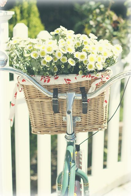 #summer #Fresh #bloomer #balcony #balconybloomer #blooms #container gardens
