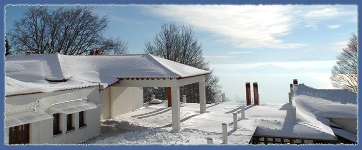 Winter Pelio!