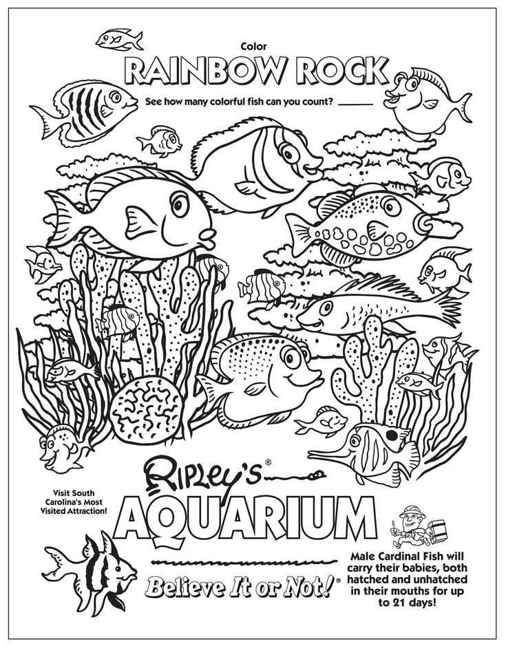 17 best school learning underwater friends coloring pages of ocean ... - Aquarium Coloring Pages Printable