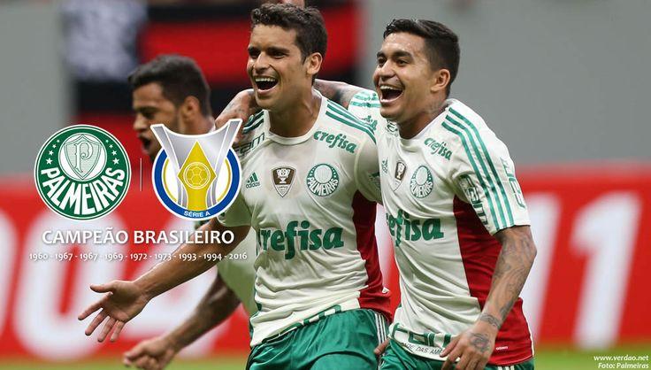 Palmeiras Todo Dia - Palmeiras Campeão Brasileiro 2016