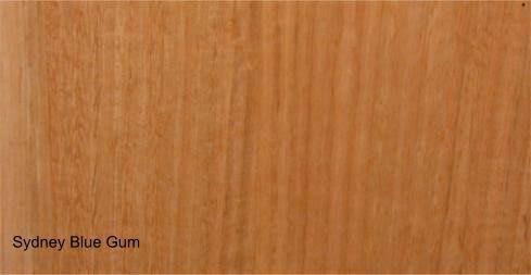 Image result for sydney blue gum