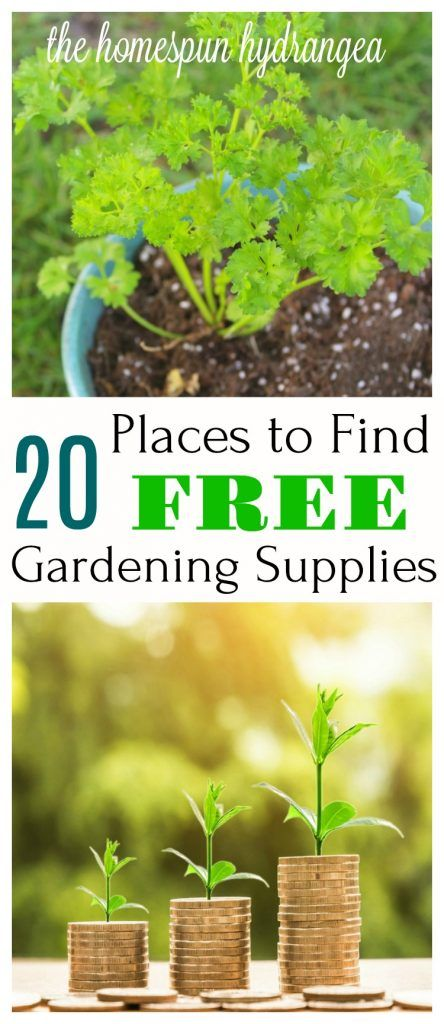 Where to Find Free Garden Catalogs and Supplies! Free seeds, free garden supplies, free gardening tools, and more. #Gardening #freebie #gardens