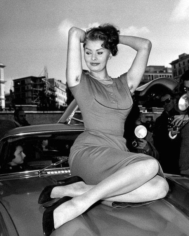 Sophia Loren Hairy Armpit In 2019  Sophia Loren, Women -3963