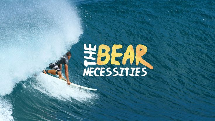 The Bear Necessities Surf trip, Surfing, Bear