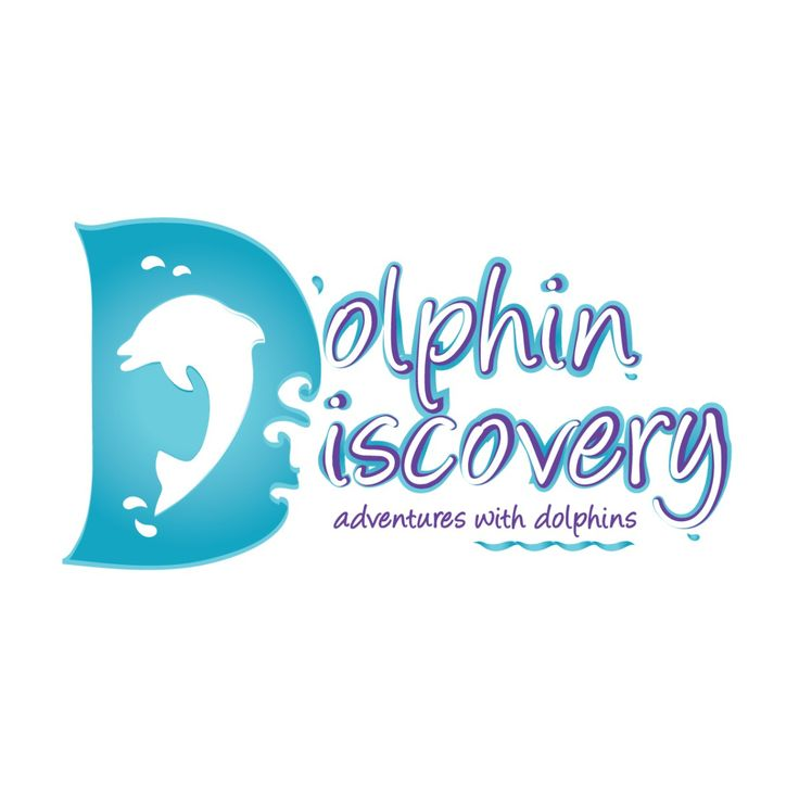 Dolphin Logo Template 26