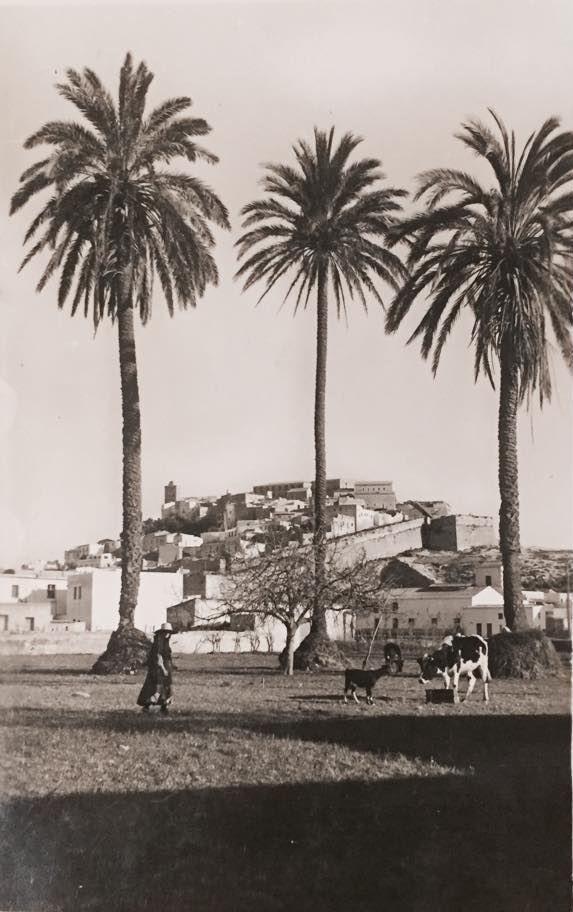 1935 Vista Dalt Vila #IbizaAntigua #DaltVila