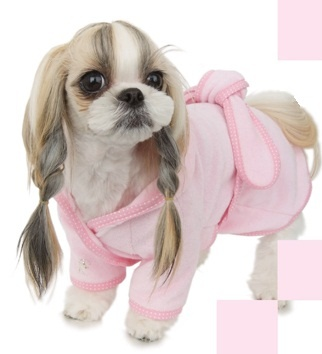 Puppy fashion pet boutique day spa 40