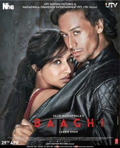 Baaghi: A Rebel For Love (2016) Subtitle Indonesia