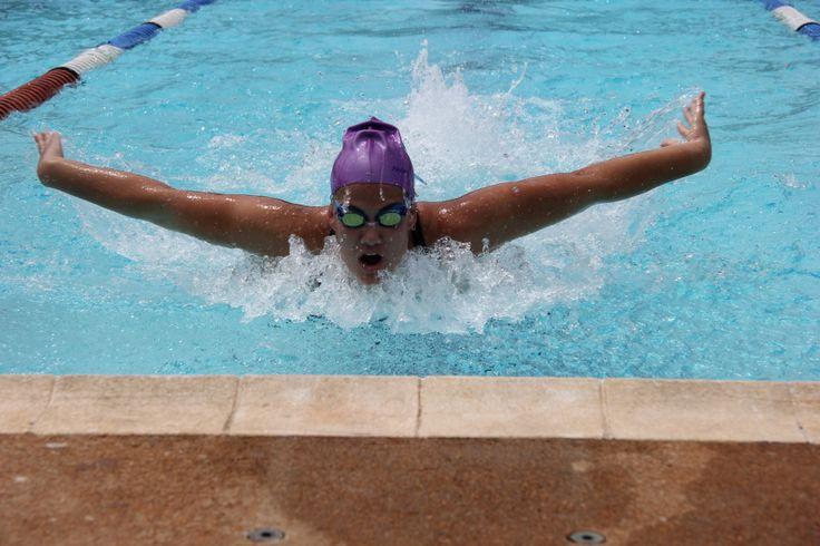 swimming, sun, gala, school , swimming pool, water