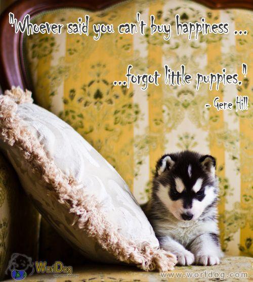 Daily Inspiration #12 - http://worldog.com/daily-inspiration-12#