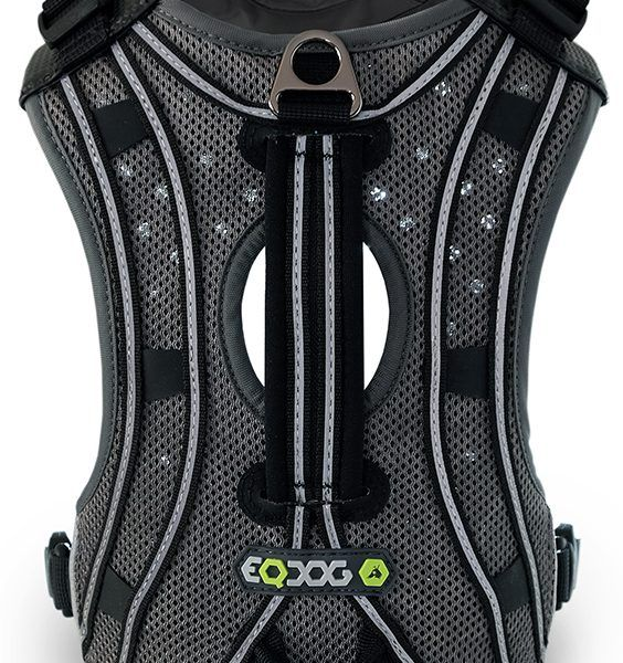 EQDOG – Pro harness | Dogship