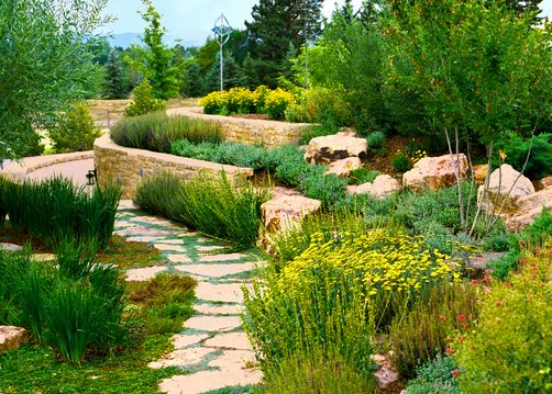 Flagstone path with creeping thyme
