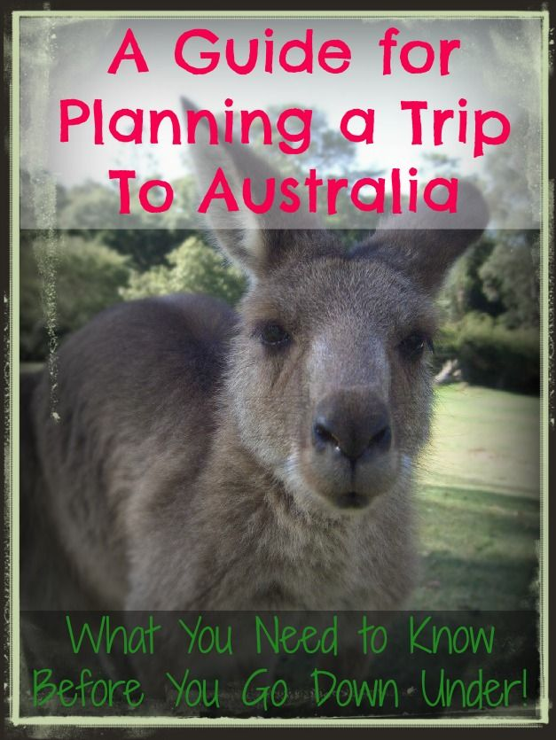 A guide to the best things to do in Australia and tips for planning your trip!