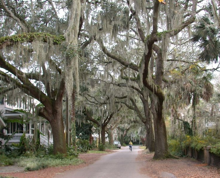 Paris Island Beaufort South Carolina | community of south evergreen real estate listings for beaufort south