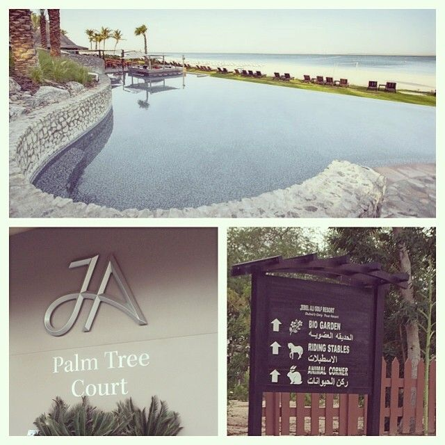 JA Palm Tree Court #JAPalmTreeCourt in دبي, دبي