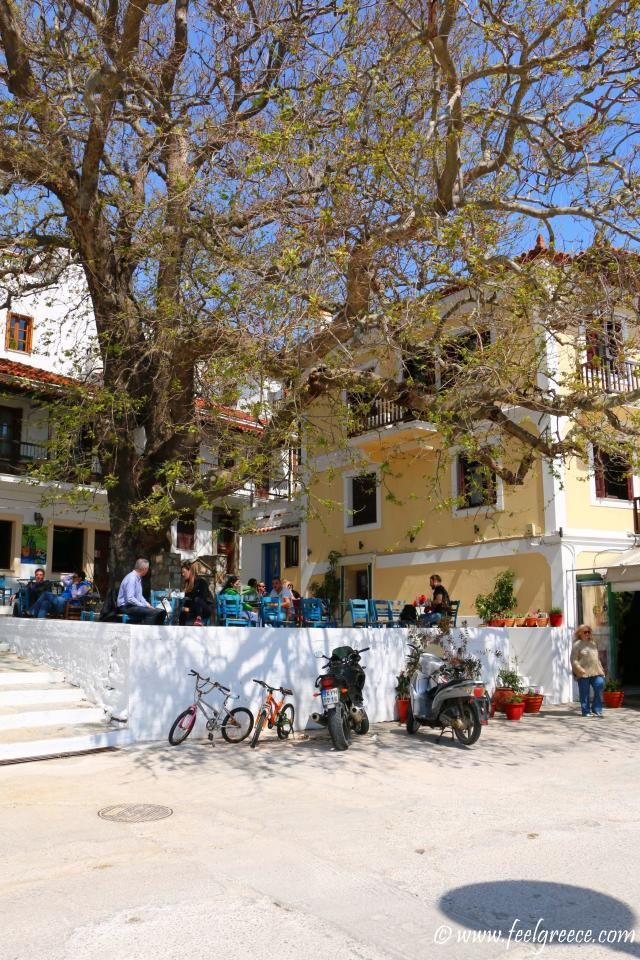 Near the promenade; photo from Skopelos Town, Skopelos