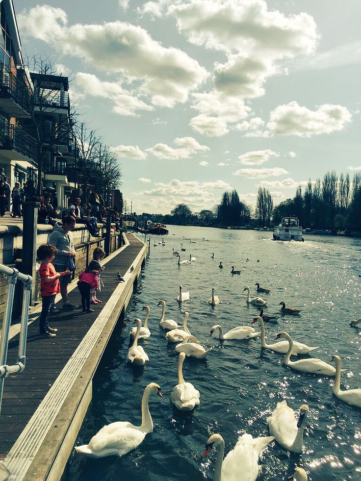 """Kingston Upon Thames 2015"" The river later the same day - but winter in 2017!"