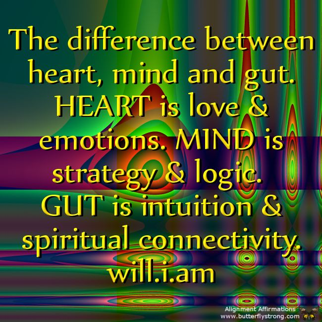 Heart is Love! Mind is Logic! Gut is Intuition! #wisewords #dream2reality #quotes Mr #iamwill http://Will.i.am