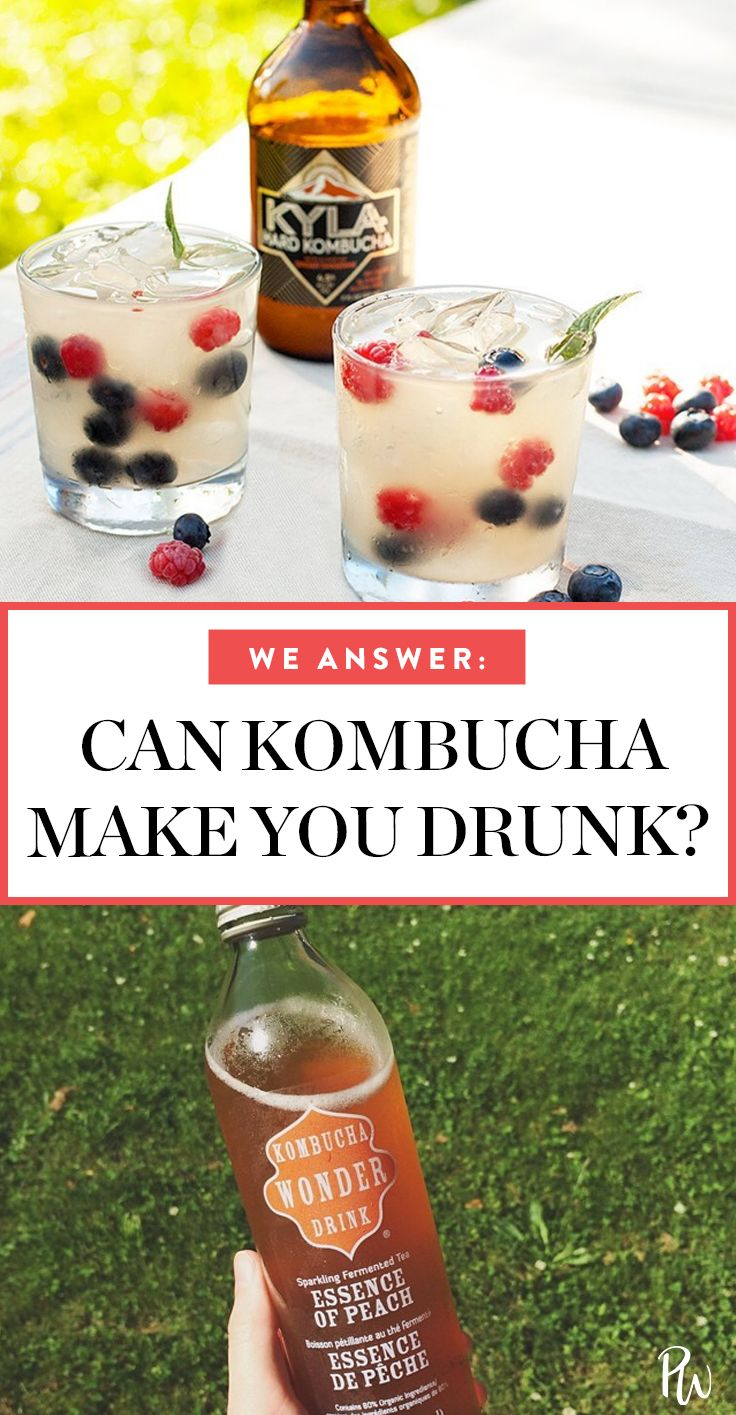 Can You Get Drunk Off Kombucha Pin On Little Bits Of Information