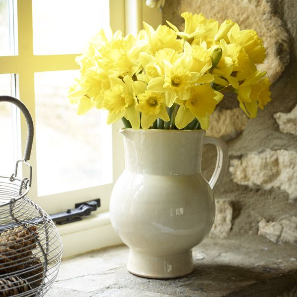 beautiful spring daffodils in the kitchen at two chapel lane