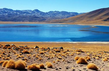 #Chili #Désert d'Atacama Désert d'abri coincé entre la fosse océanique d'Atacama et la Cordillère des Andes/