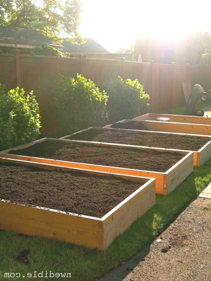 Umgestaltung Vom Rasen Zum Garten In 6 Einfachen Schritten Lawn To Garden In Wooden Garden Planters Small Backyard Landscaping Raised Garden