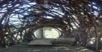 Dormire come gli uccelli: i nidi sugli alberi di Jason Fann
