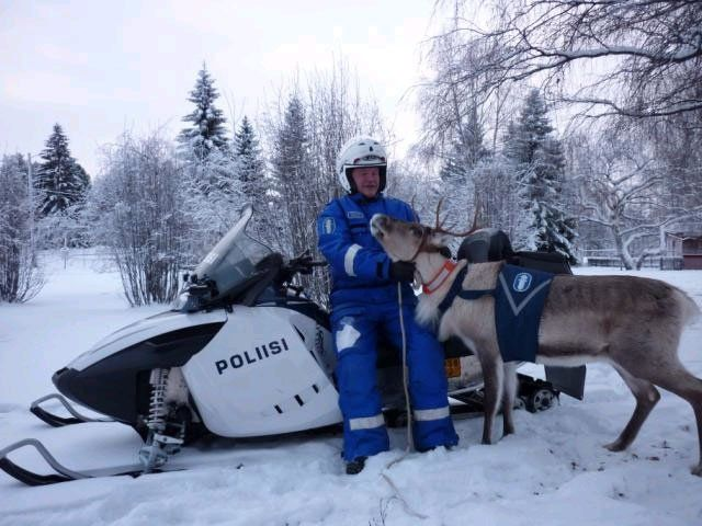 Finnish police reindeer, so slow down or the reindeer is giving you a ticket!