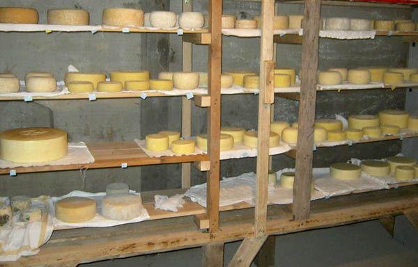 PlatFerma | Brânzeturi artizanale după rețete italienești: Asociația Curtea Culorilor | Brânzeturi la maturat în pivniță http://platferma.ro/branzeturi-artizanale-asociatia-curtea-culorilor/