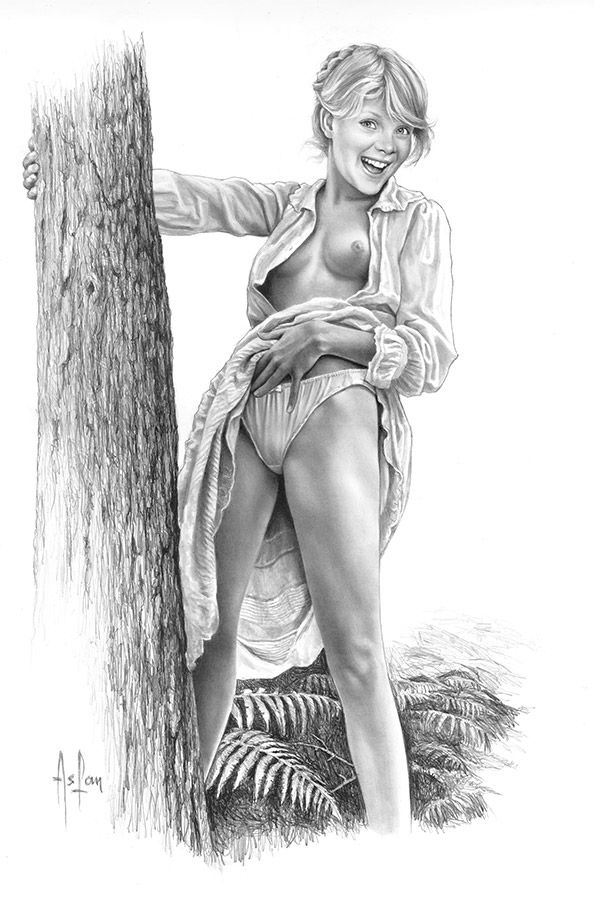 Erotic pin up art