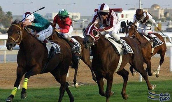 نادي الفروسية ي علن التجهيز لتنظيم منافستين للخيل ينظم نادي السباق والفروسية الأربعاء والخميس المقبلين سباقين للخيل الأول على كأ Horseriding Horses Animals